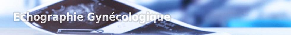 Echographie Gynécologique